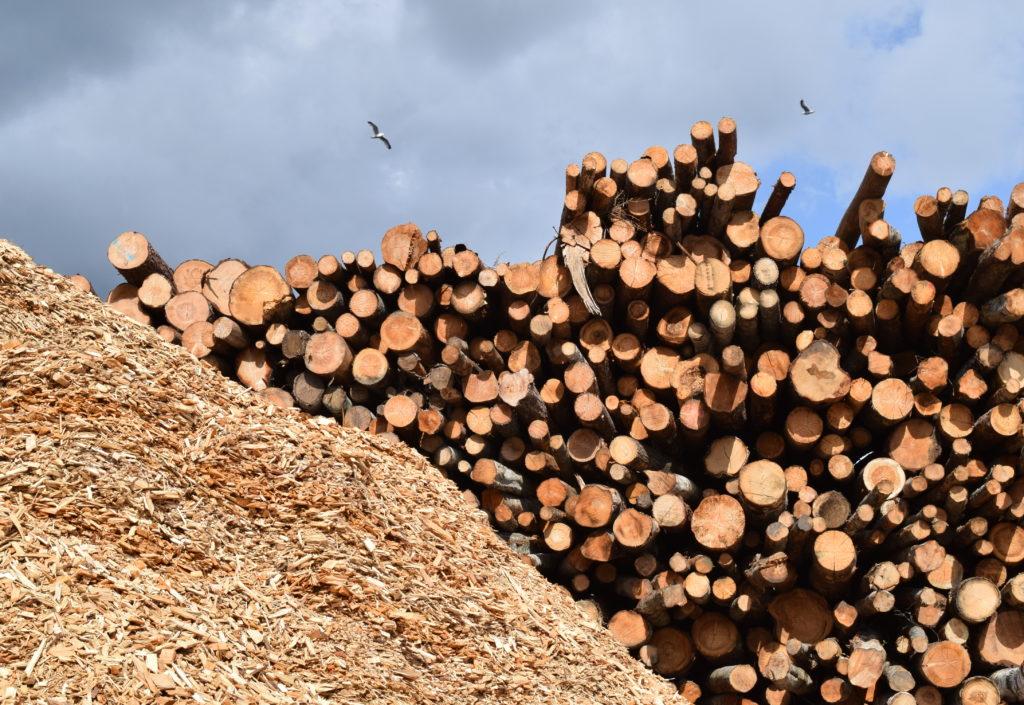 AT Skog øker massevirkeprisen