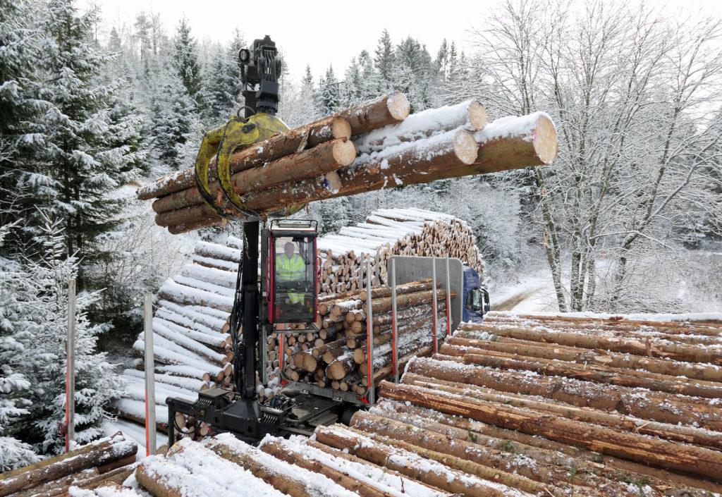 Skogeierne har stiftet Norsk Skogkapital