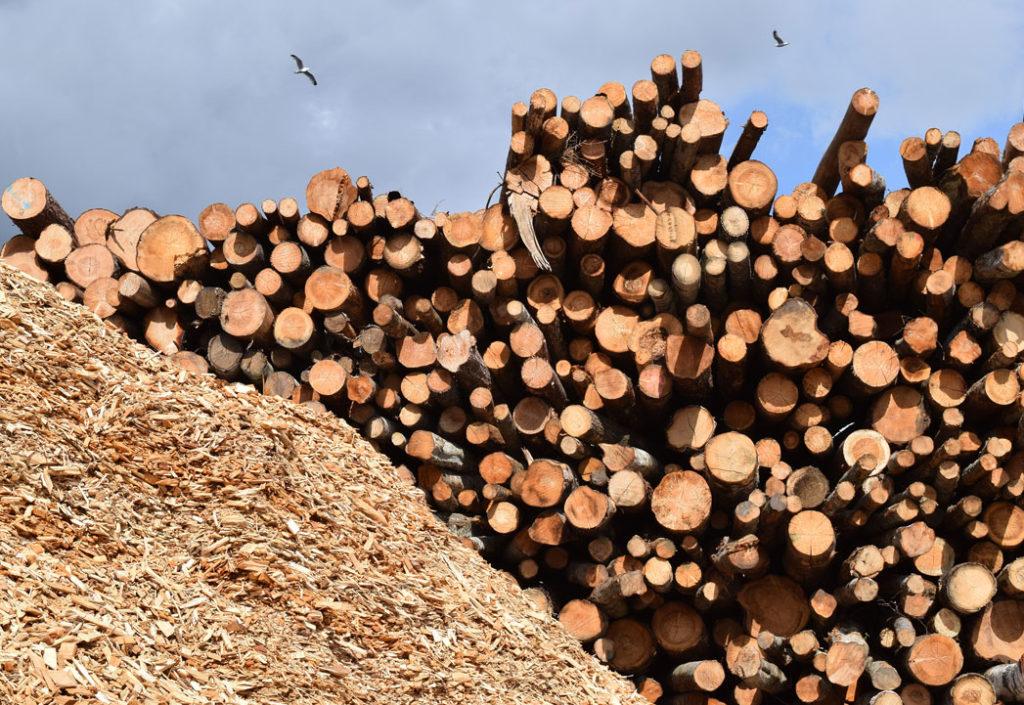 AT Skog øker prisen på massevirke