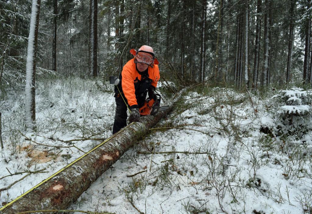Husk å melde inn henteklart tømmer!