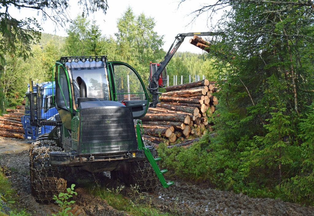 AT Skog søker økonomisjef