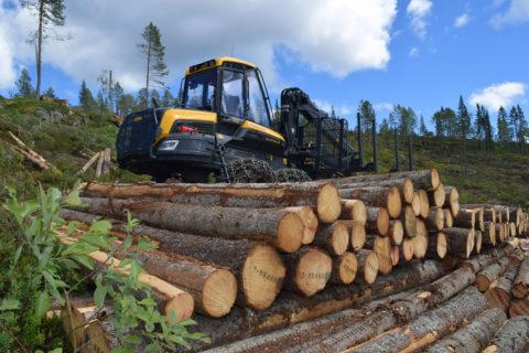 AT Skog overtar skogsdriftlag