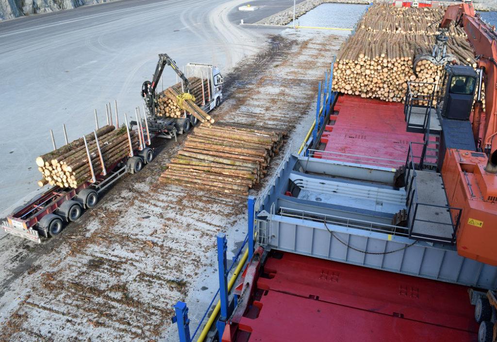 Tømmermarked eksport høsten 2019