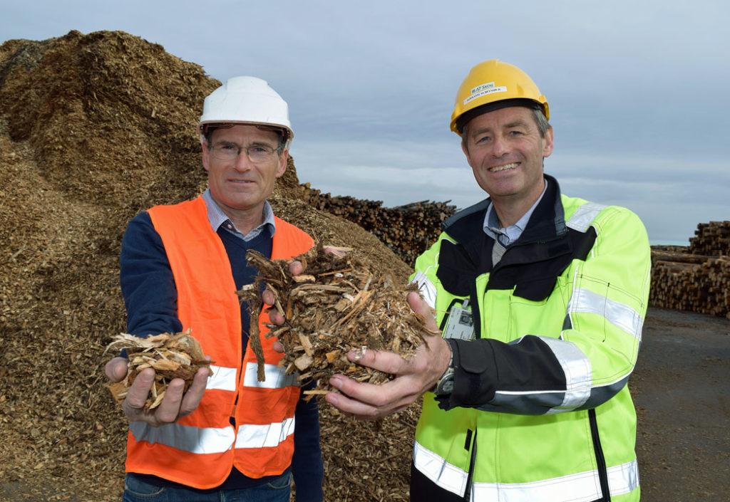 Vil du jobbe med tømmereksport?