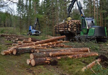 AT Skog tilpasser produksjonen