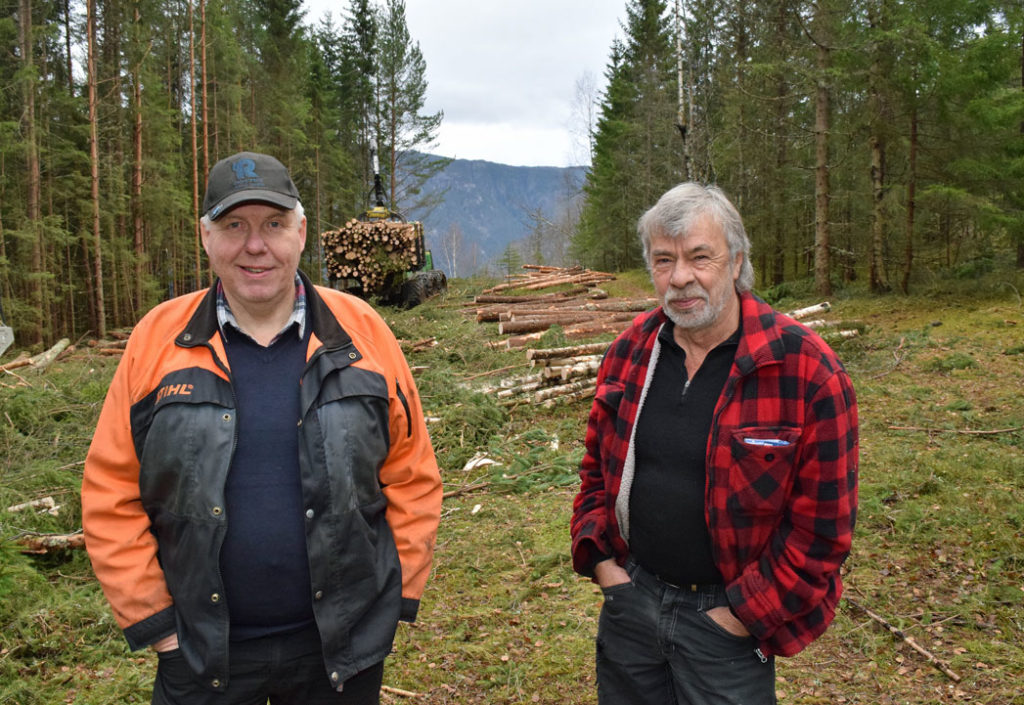 Jon og Knut setter igjen halve trær