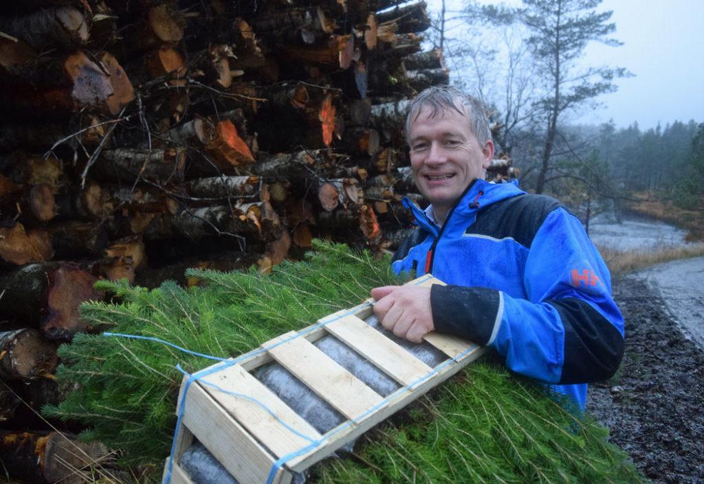 Hogger kratt – planter 50 000 trær