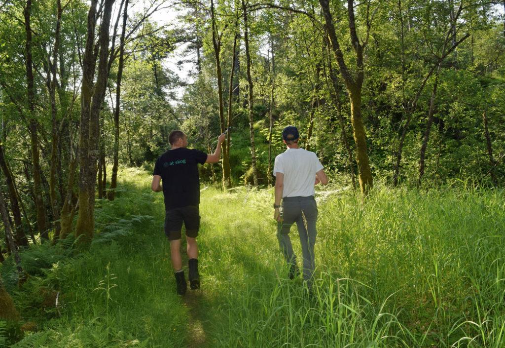 Befaring-frivillig-vern-med-AT-Skog