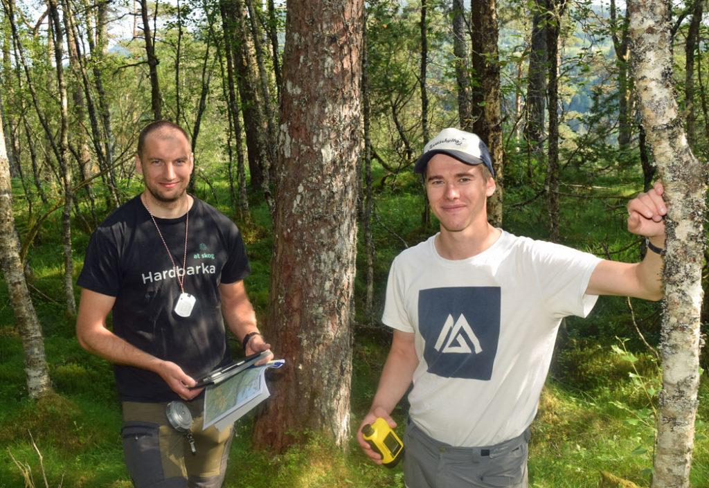 Vurderer du skogvern? Kontakt oss