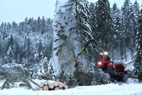 Frist for kandidatforslag til styret og valgkomiteen i AT Skog er 8. februar