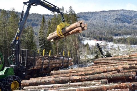 AT Skog øker prisen på sagtømmer